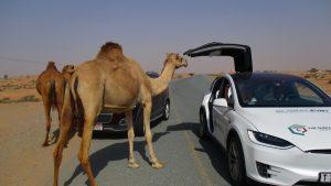 luật lệ lái xe ô tô kỳ lạ